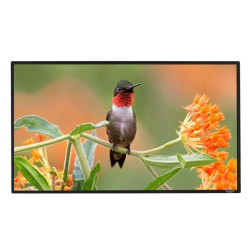 "Liberty Grandview 82""(16:10) Edge Fixed Frame Screen With 2.9 Cms Frame With Perforated"