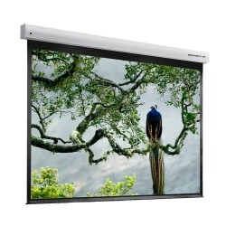 "Liberty Grandview 210"" (4:3) Cyber Series IP Multi Control Screen With Fiber Glass (with Wooden Crate Packing)"