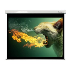 "Liberty Grandview 350"" (16:9) Large Stage Fantasy B  with  Matte White (WM9) Fabric- Screen"