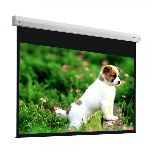 "Liberty Grandview 100"" (2.35:1) Fancy Motorized Screens"