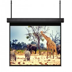 "Liberty Grandview (4'X7') 92"" (16:9) Skyshow Screen With Matt White"
