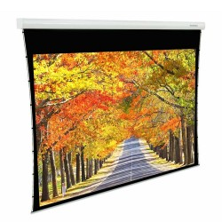 "Liberty Grandview (4'X7')92"" (16:9) Fancy Motorized Tab-Tension Screen"