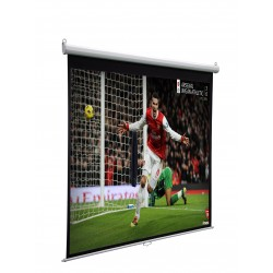 "Liberty Vega Show 84"" (4:3) Neptune Pro-line Electric Screen"