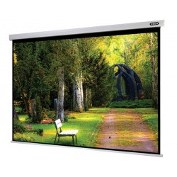 "Liberty APLUS (Formerly Vega)  110""(4.5'x8') (16:9) Manto Motorized Screen 4 in1 Remote"