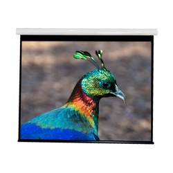 """Liberty Vega show Supreme Tab-Tensioned Screen( 5'x9')120""""(16:9) HDTV Format with Matte Gray"""