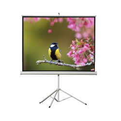 "Liberty Vega 120"" (4:3) Athena Eco-line Portable Tripod Screen"