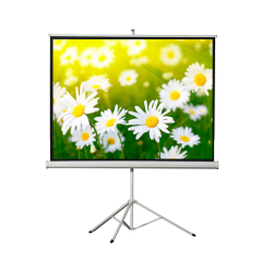 "Liberty Vega 109"" (16:9) Athena Eco-line Portable Tripod Screen"