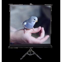"Liberty Vega 80"" (4:3) Ceres Eco-line Portable Tripod Screen"