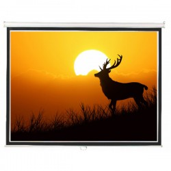 "Liberty Lite (6'x4') 84"" (4:3) Instalock Screen with SRS"