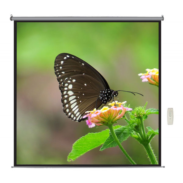 "Liberty Lite 100"" (5'x7') (4:3) Motorized Screen With RF Remote"