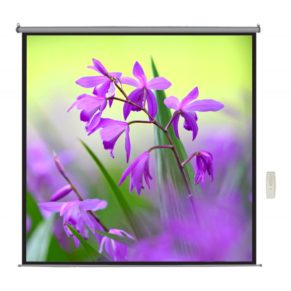 "Liberty  Lite 84"" (6'x4') (4:3) Motorized Screen with RF Remote"