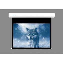 "Liberty Screen Pro Topview 250"" (16:9) Giant Motorized Screen - Stainless Steal (Black Drop UP 350mm)"
