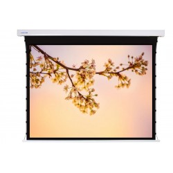 """Liberty Screen Pro 100"""" 16:10 Jampo Tab-Tensioned Motorized TW Screen"""