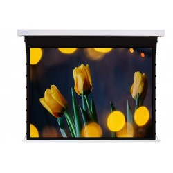 """Liberty Screen Pro 100"""" 4:3 Jampo Tab-Tensioned Motorized TW Screen"""